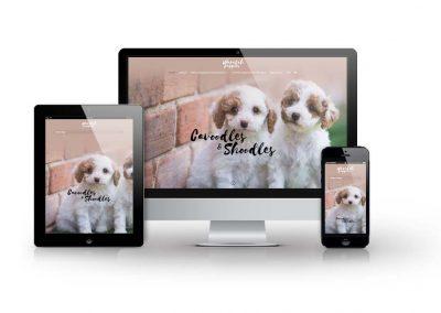 Waratah Puppies